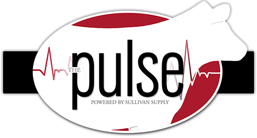 The Pulse Blog
