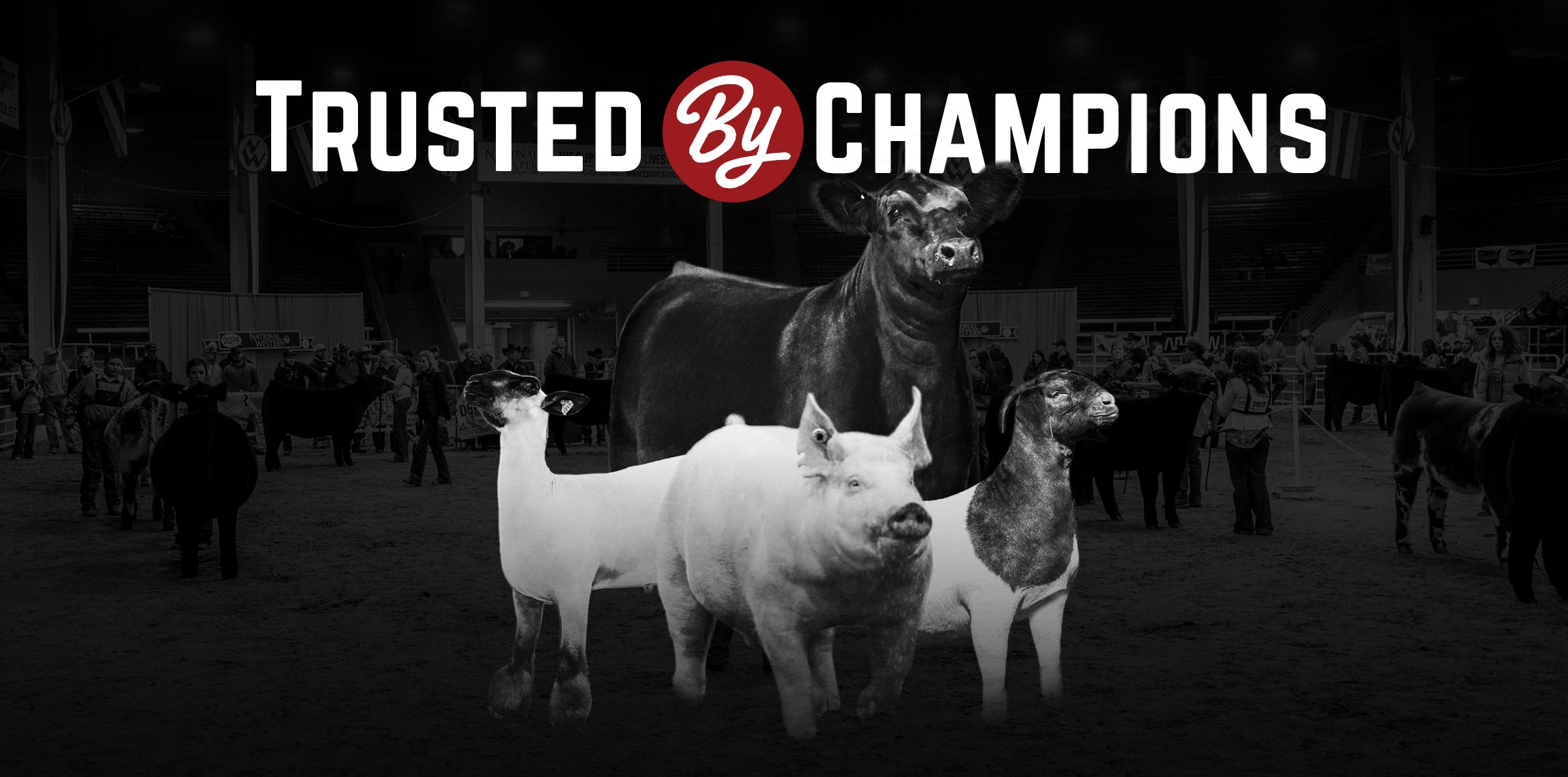Sullivan Supply, Inc  – The Innovative Leader in Livestock